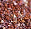 Quinoa, la regina della cucina del Perù