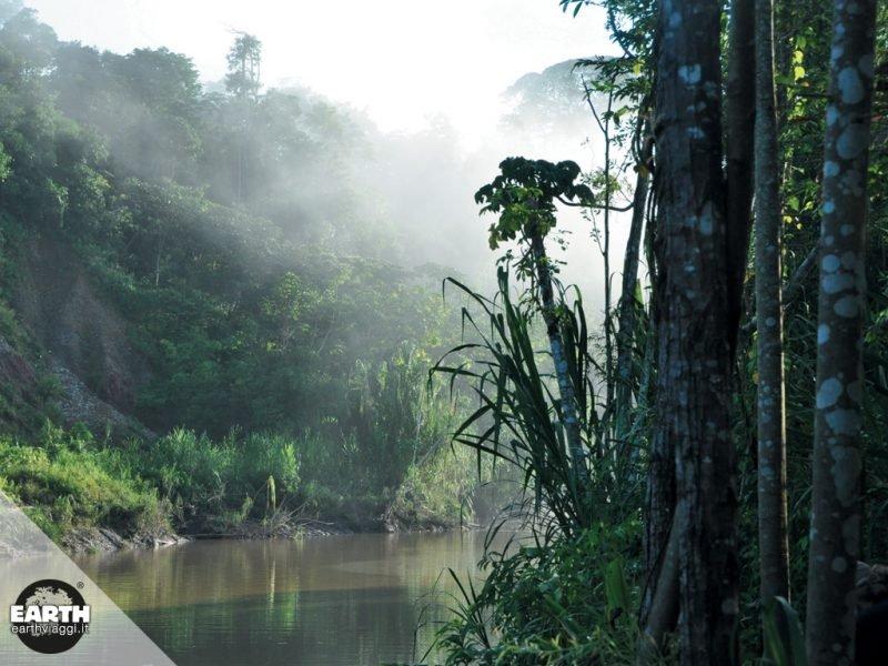 Perù, in viaggio alla scoperta dell'Amazzonia