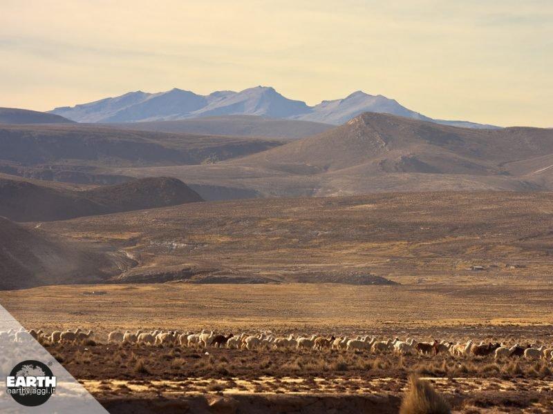 Alla scoperta della Cordigliera delle Ande