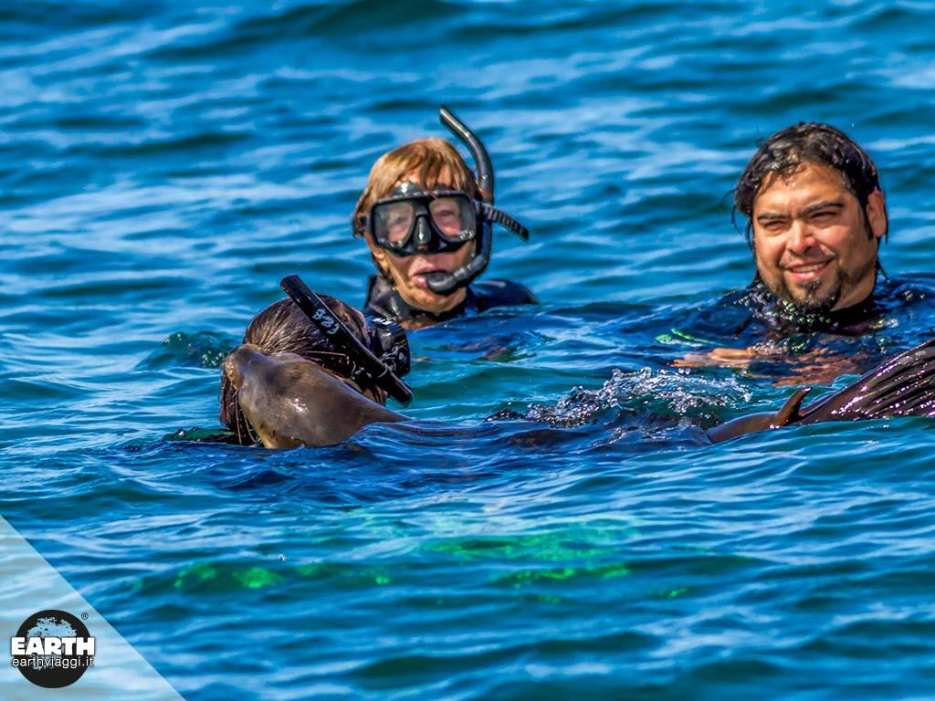 Alla scoperta di Bahia Magdalena in Baja California