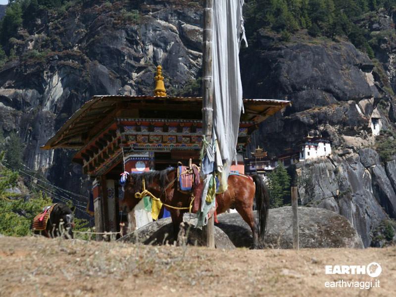 Taktsang Palphug, spiritualità ad alta quota in Bhutan