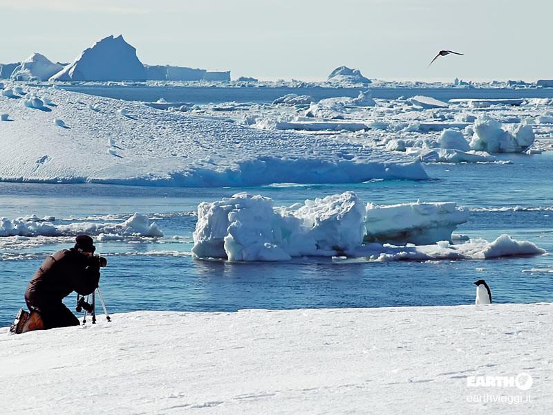 South Shetlands, Antartide