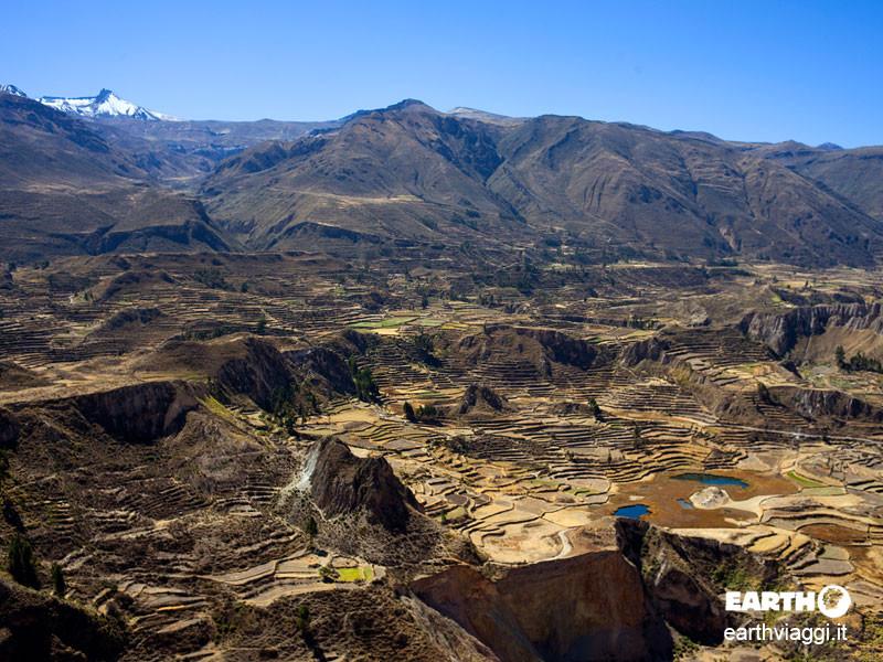 Canyon del Colca, viaggio nelle profondità del Perù