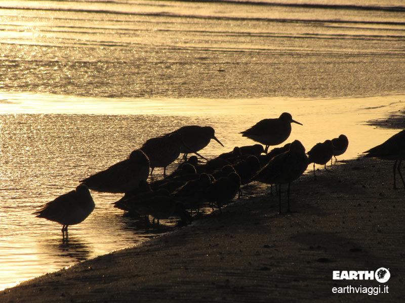 Cosa visitare in Baja California: la top ten di Earth Viaggi