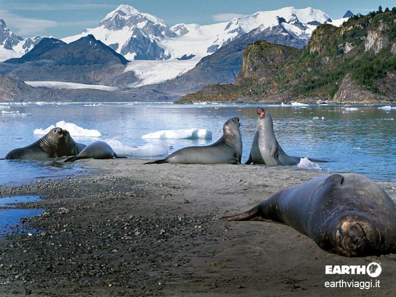 Dieci buoni motivi per un viaggio in Patagonia