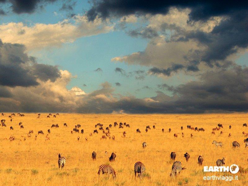 cosa visitare in Tanzania