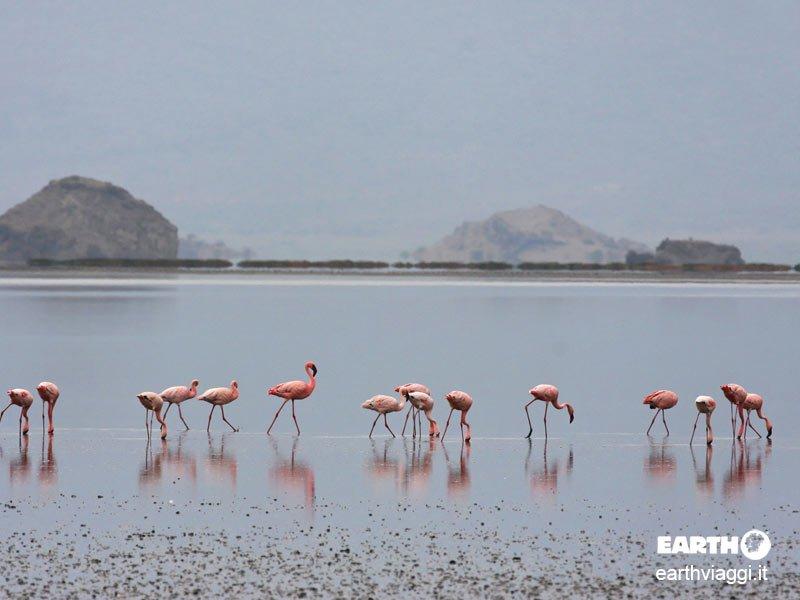 Racconto per immagini della Tanzania