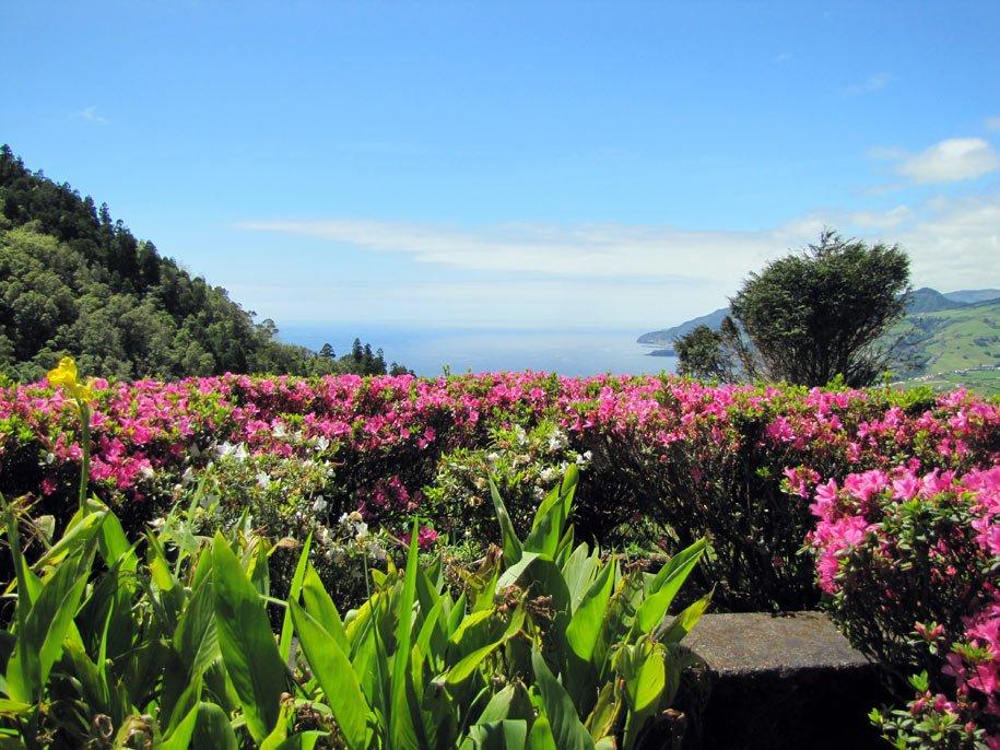 Azzorre, giardini in mezzo all'Atlantico
