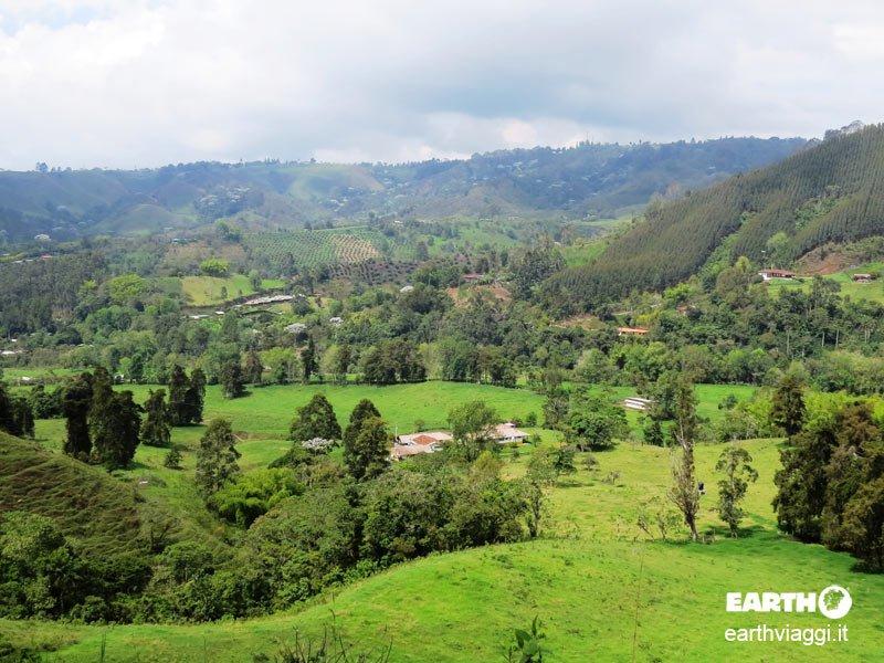 Valle di Cocora, alla scoperta del simbolo della Colombia