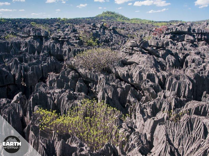 Mauritia, il continente scomparso tra India e Madagascar