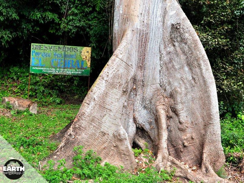 Tra le foreste del Guatemala alla scoperta di antiche città Maya