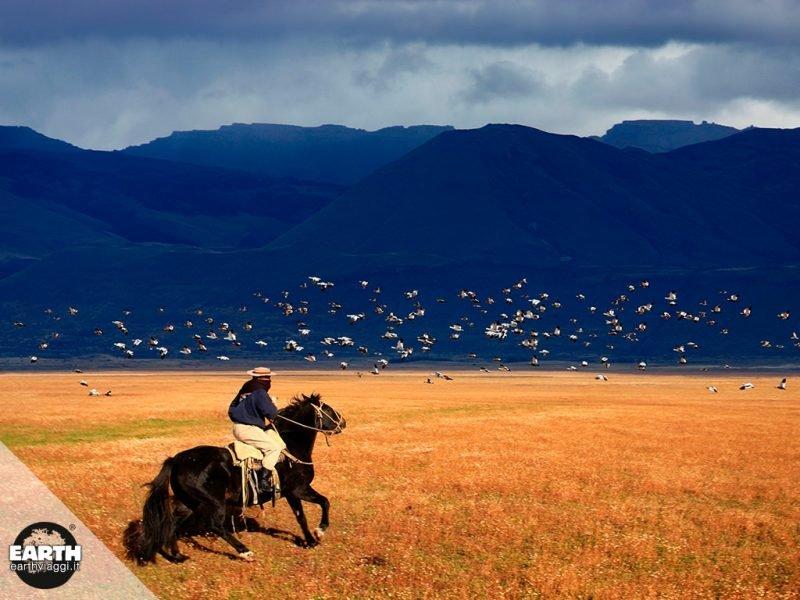 """Letture consigliate: Bruce Chatwin, """"In Patagonia"""""""