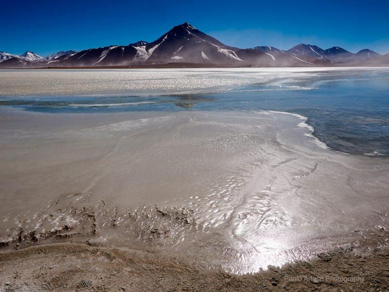 Altipiani andini di Cile e Bolivia