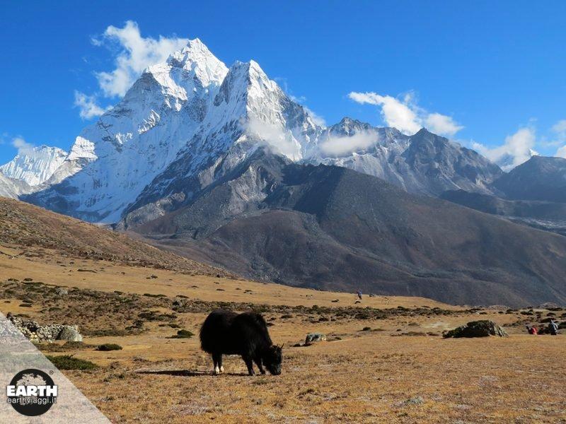 Piccola storia delle esplorazioni dell'Himalaya
