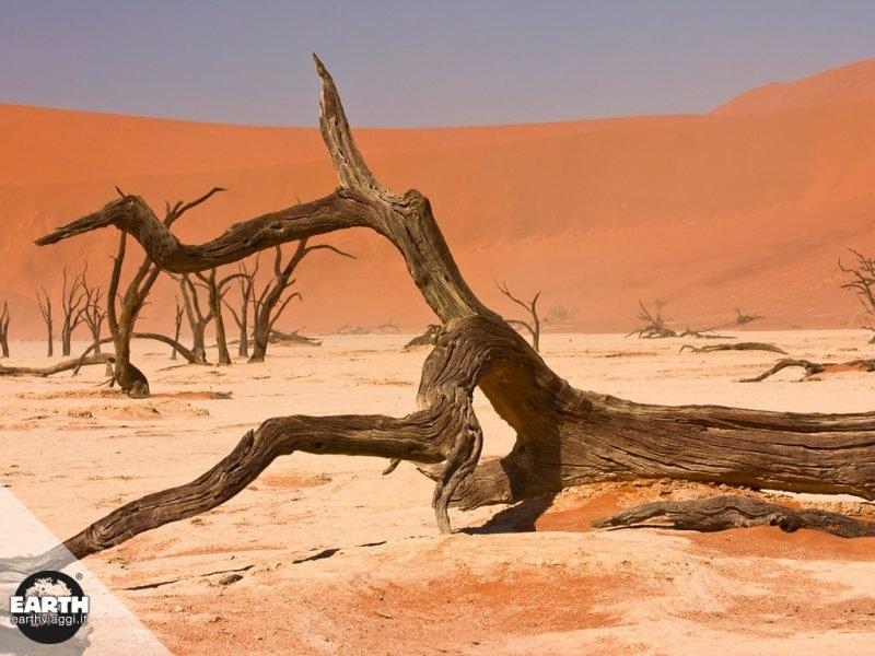 Naukluft National Park, la natura selvaggia della Namibia
