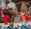 Visitare Kathmandu: consigli di viaggio per conservare emozioni senza tempo