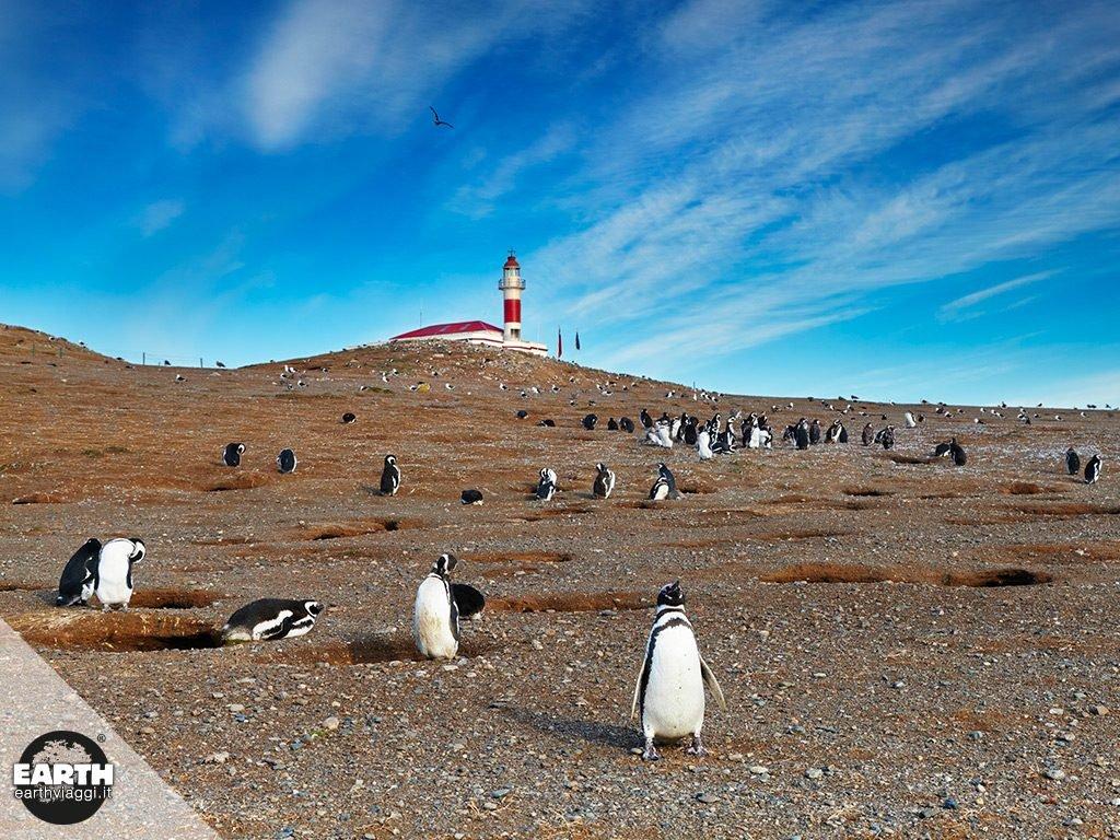 """Letture consigliate: Francisco Coloane, """"Antartico"""""""