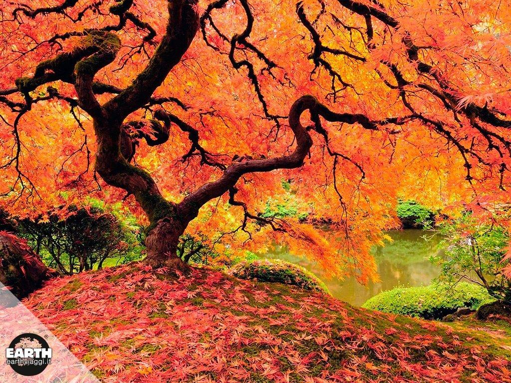 Guida alle migliori destinazioni da visitare in autunno