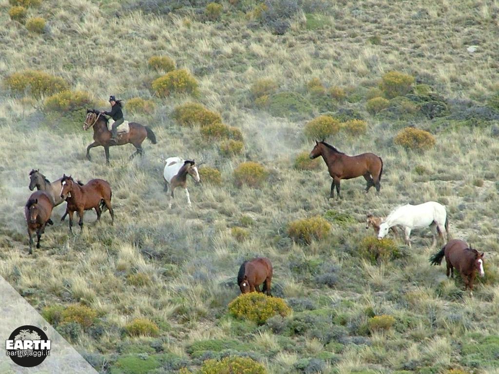Cavalcare in Patagonia, nelle terre infinite