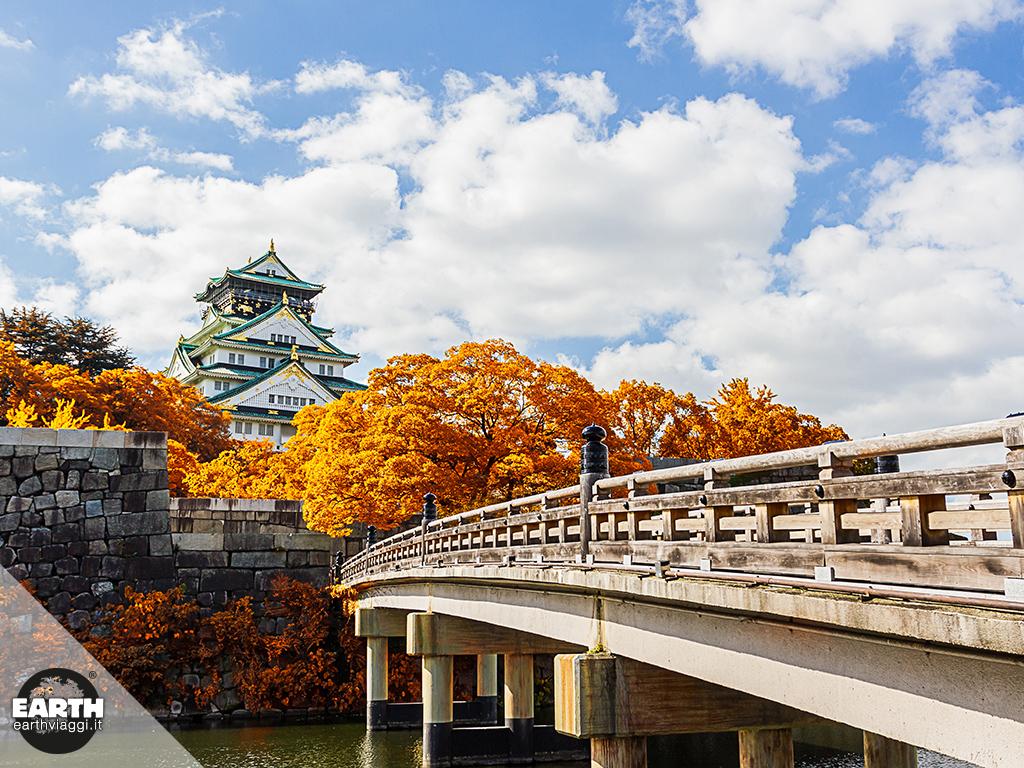 Momijigari, la meraviglia del foliage in Giappone
