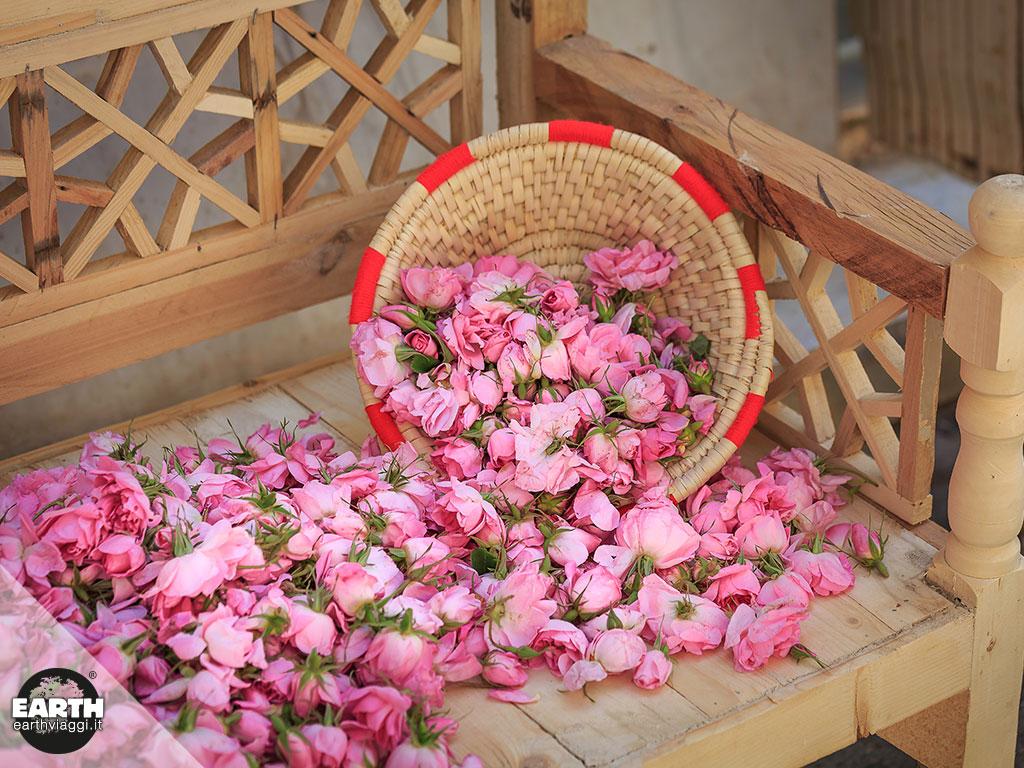Il festival delle rose (e dell'acqua di rose) di Kashan