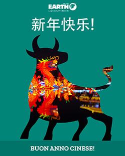 Il Capodanno cinese