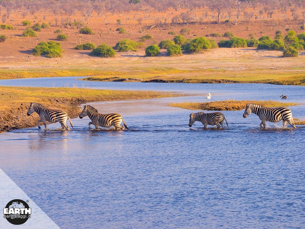 Visitare il Chobe National Park in Botswana